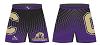 Cartersville Wrestling 2014/2015 MMA Shorts
