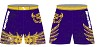 Monticello Wrestling 2016/2017 Legacy Stretch Short